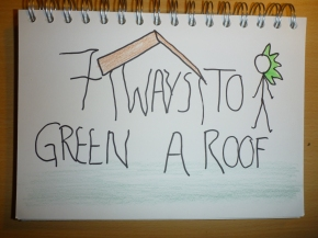 7 ways to make your Roof Green without planting it